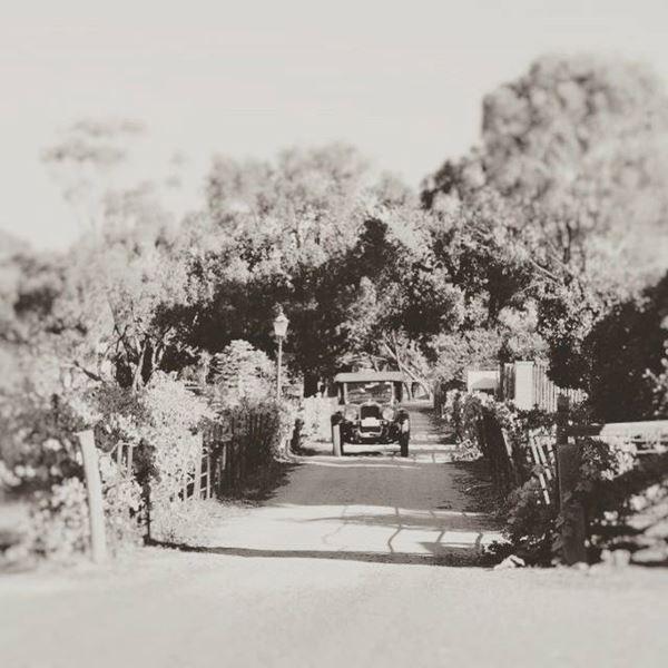 Vintage arrival